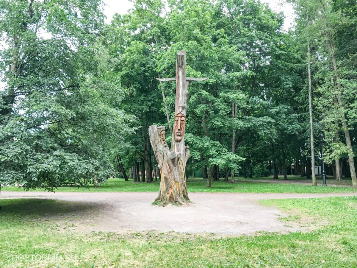 Дерево в парке Эспланада