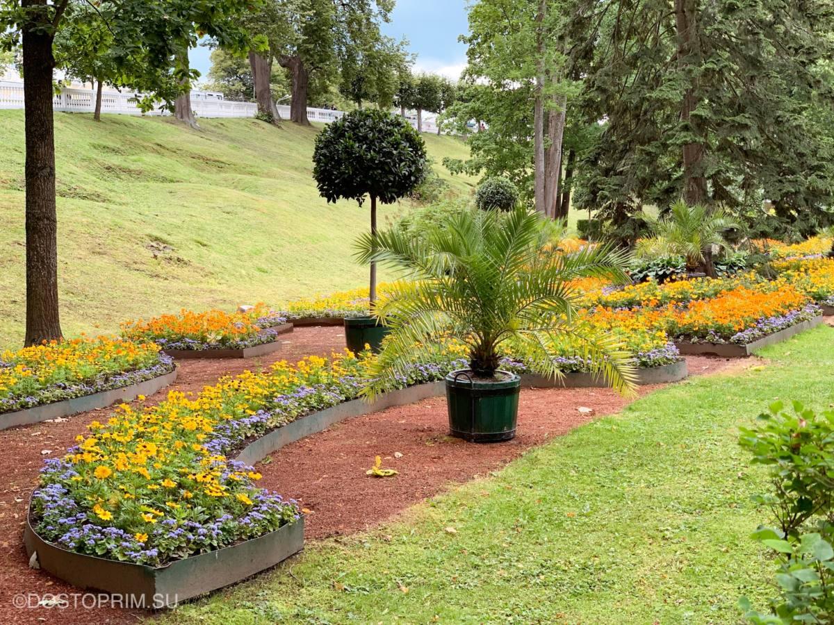 Сад Петергофа