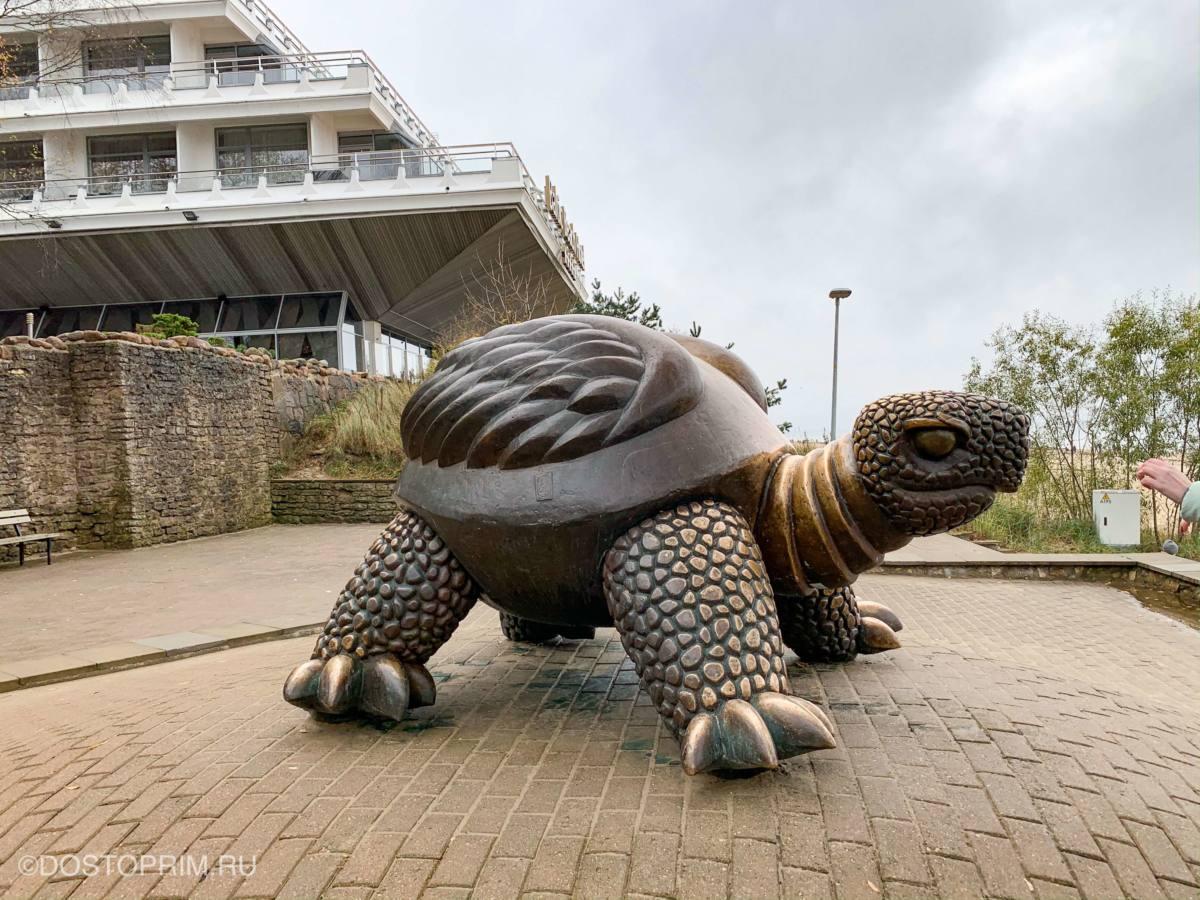 Черепаха символ Юрмалы