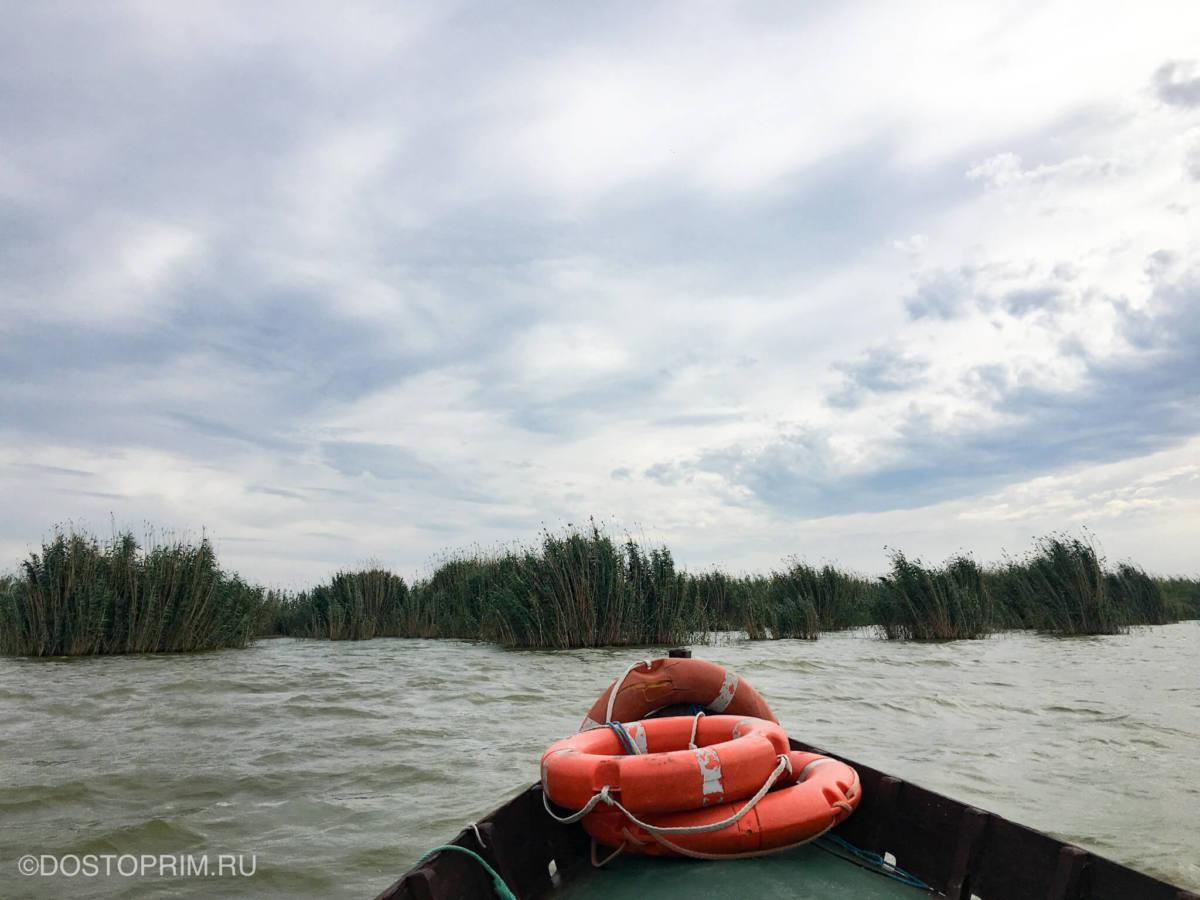 На лодке по озеру Альбуфера