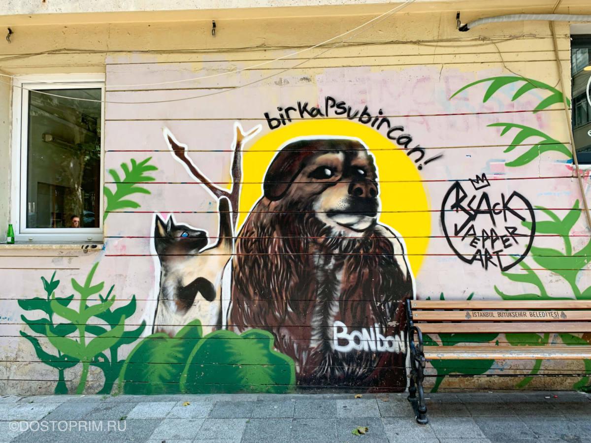 Рисунок кошки и собаки на улице Мода